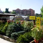 Casla Jardinería y Paisajismo
