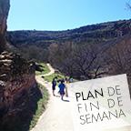 plan11x