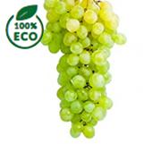 Uvas eco de organizados.es