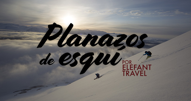 Elefant Travel
