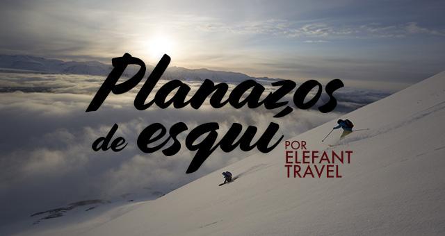 Elefant Travel