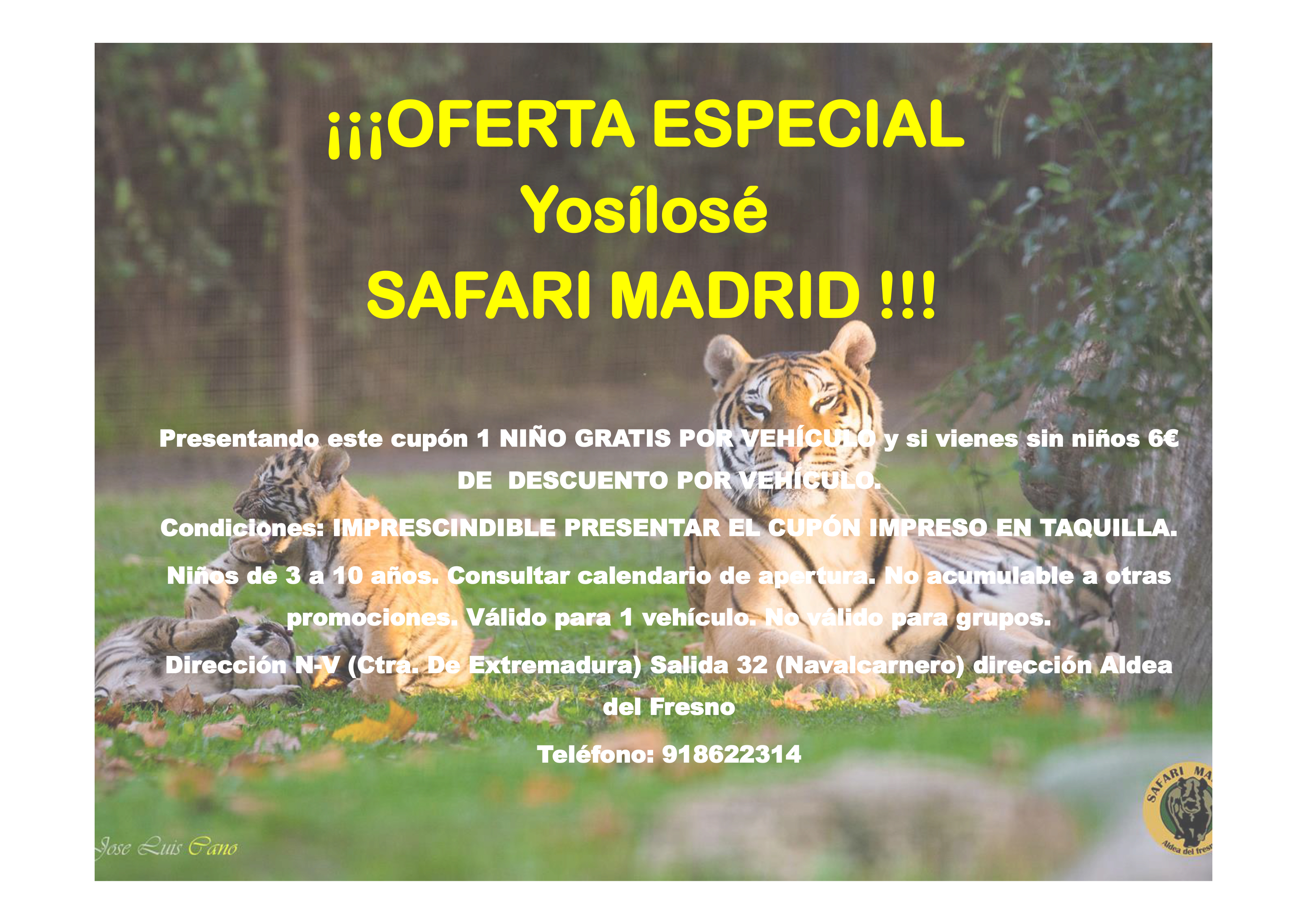 Safari Madrid | yosilose.com